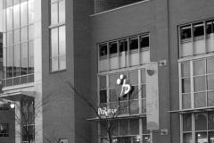 Intermed Building: Glass Curtainwall Engineering